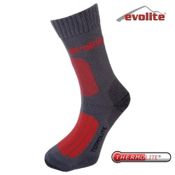 EVOLITE - Evolite Monster Thermolite Sock Çorap 43-46 Blue